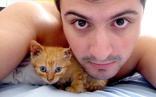 猫を飼う独身男性が増加している!?その理由は『適度な距離感と人間の彼女みたいにプレゼントやお出かけなどの要求はしないから』