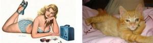 【ピンナップな猫画像】 猫がセクシーなポーズを真似するとこうなるwww