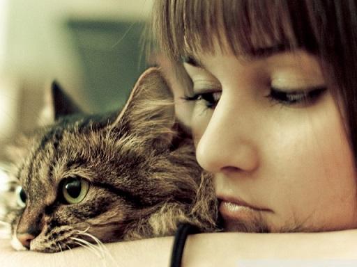 猫のことわざ 『A cat has nine lives』 しぶとい女性にも使われていたらしい・・・