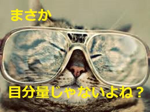 2015_04_24_デブ猫-エサは目分量じゃないよな