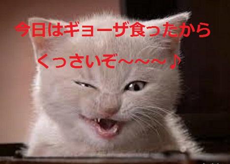 猫の口くっさ~!!口臭が気になって眠れないあなたに贈る口臭対策案☆
