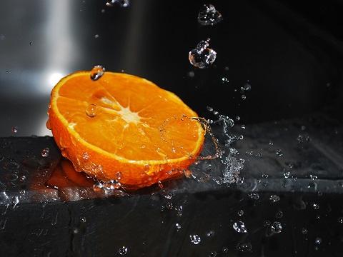 2015_05_14_猫しつけ-柑橘系は苦手