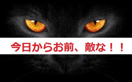 2015_05_14_猫しつけ-体罰はダメ