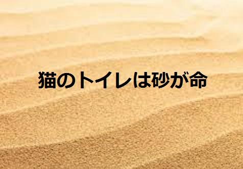 2015_05_14_猫しつけ-猫のトイレは砂が命