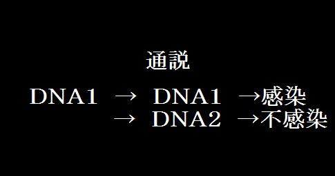 DNA感染経路