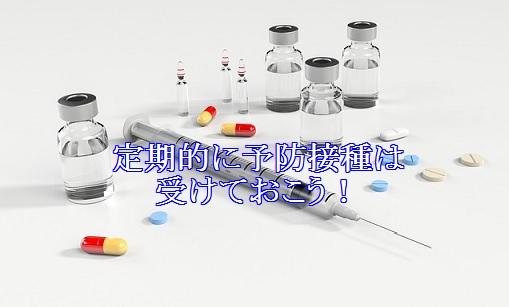 猫-風邪防止-予防接種-おすすめ