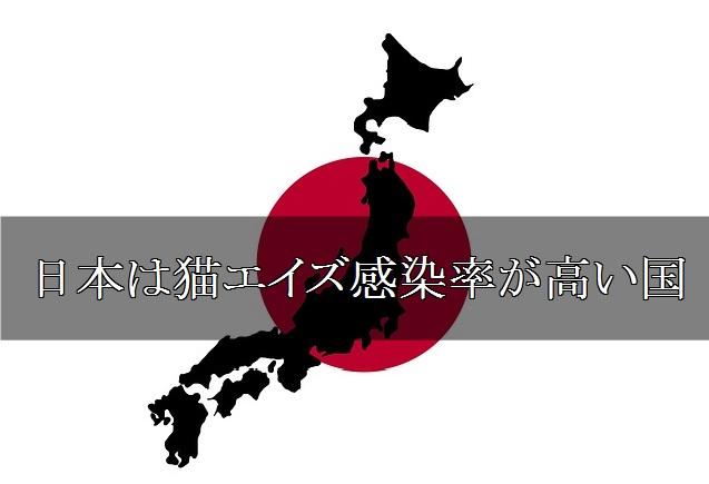 日本は猫エイズ感染率が高い国