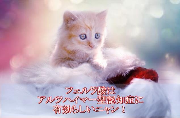 猫-フェルガード-フェルラ酸とは