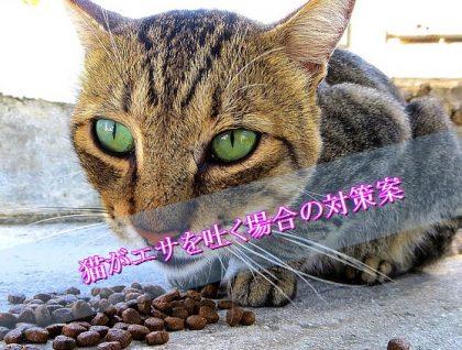 猫-エサ-吐く-対策