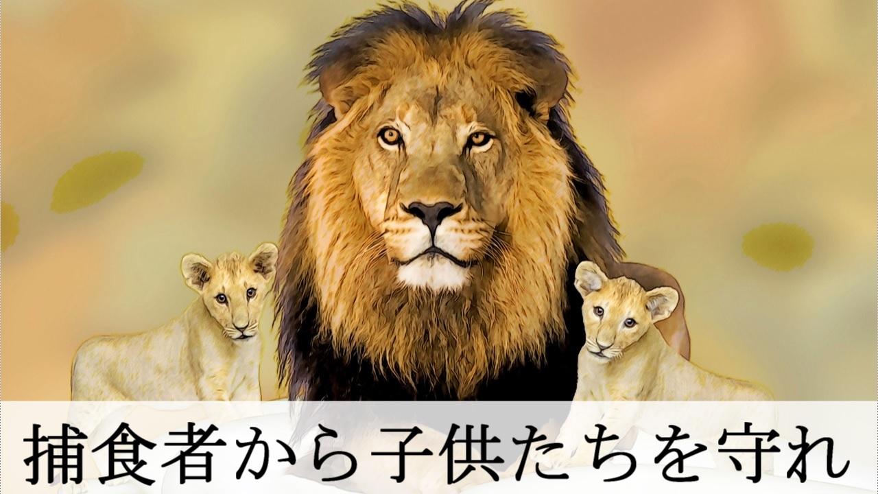 胎盤を食べる理由 - 捕食者から子供たちを守るため - ライオン