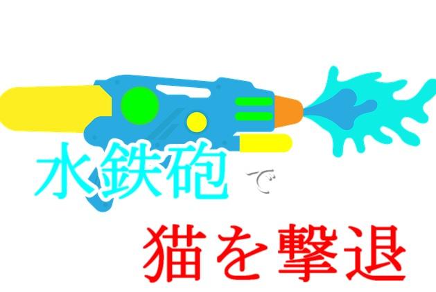 5-野良猫-撃退-水鉄砲