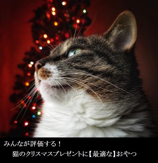 みんなが評価する!猫のクリスマスプレゼントに【最適な】おやつ